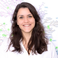 CQMED - Marcella Braga